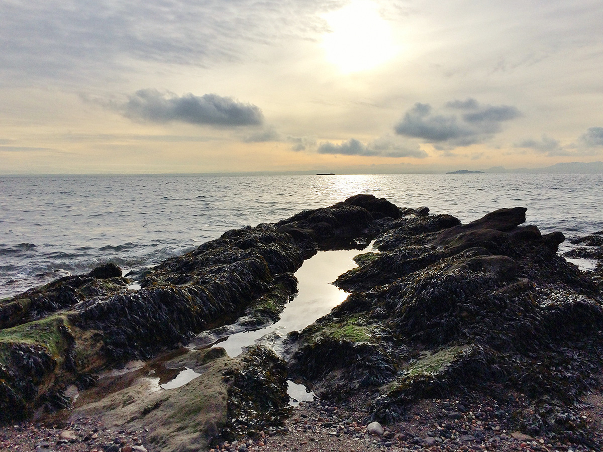 letting-go-of-fibroymalgia-guilt