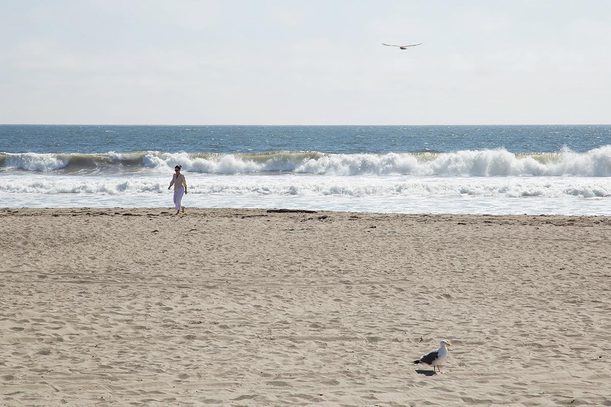 dgp-stinson-beach-017