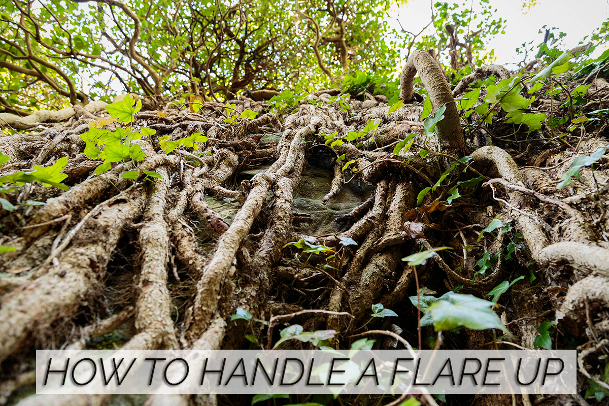 how-to-handle-flare-up-set-back