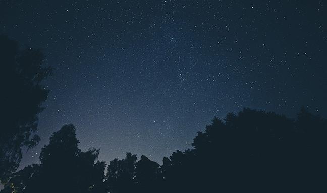 february-stars