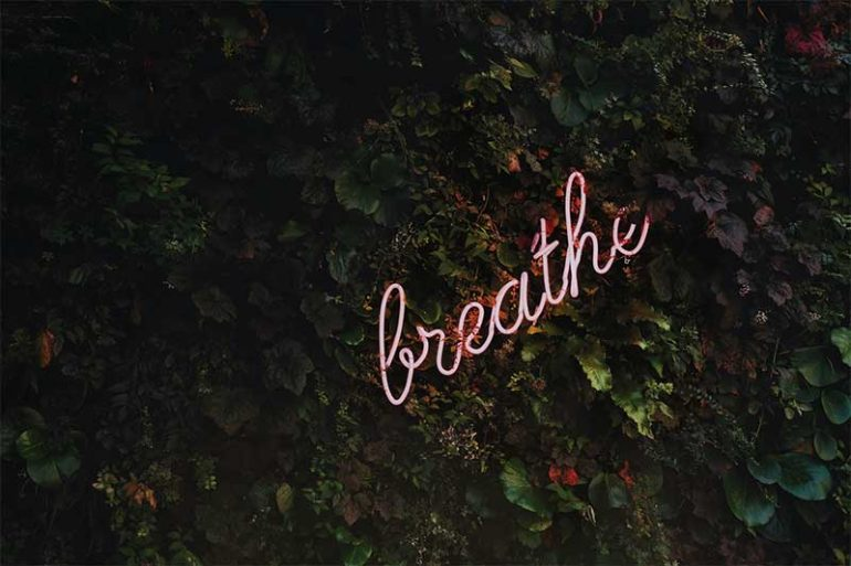 "Photo shows a greenery background of leaves with a pink neon sign that reads ""breathe"""